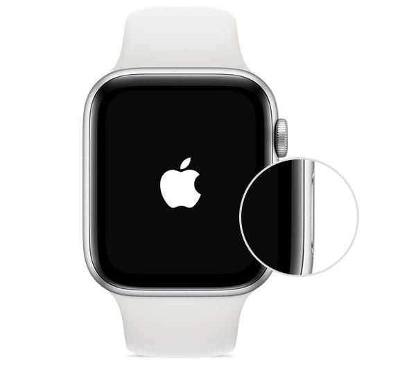 боковая кнопка Apple Watch